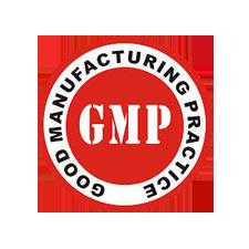 GMP-N